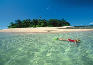 Help strengthen Queensland's marine pest biosecurity