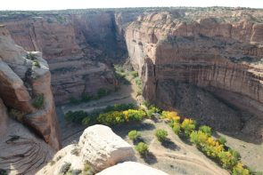 Fall color along the stream in Canyon de Chelly