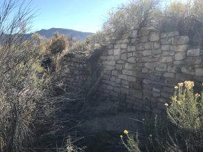 Yucca House wall still standing after 700+ years!