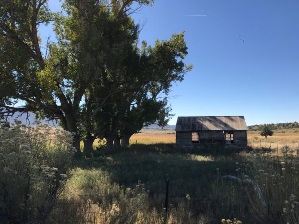 Old farmhouse near Yucca House