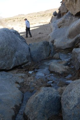 Frozen water at Rock Spring - Mojave Desert
