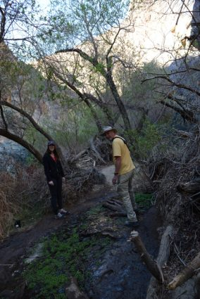 Megan and Bruce navigate the path