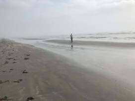 Bruce watches birds on a sandy mound