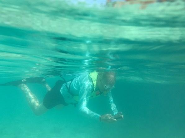 Bruce photographs underwater
