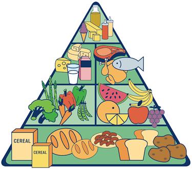 El engaño de la Pirámide Nutricional