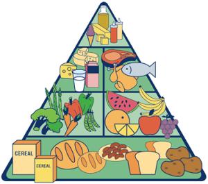 engaño piramide nutricional