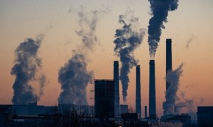 special article pollution