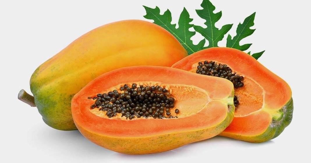papaya prevents many diseases