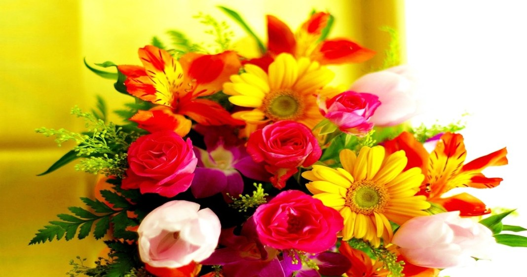 Flower means romantic feeling and is good for home