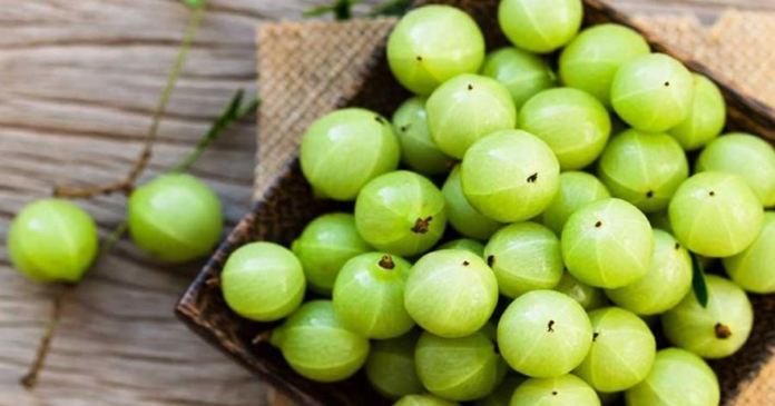 eat Indian gooseberry when recovering from coronavirus
