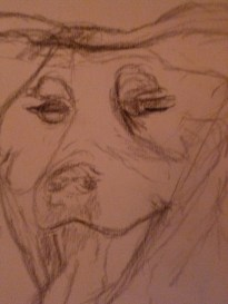 A charcoal sketch from photo, one of several.