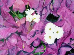 Bourganvillea Oil on block canvas 61 cm x 46 cm x 4cm (ready to hang) £150.00