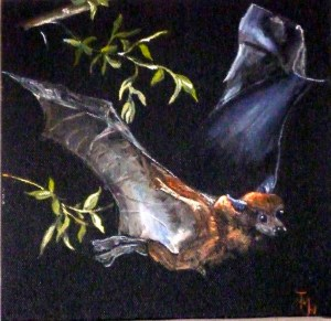 Flying Fox Acrylic on block canvas 25 cm x 25 cm x 4 cm (ready to hang)