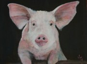 "Who said ""Pork Chops?"" acrylic on canvas 25 x 20 cms"