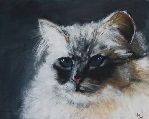 """""""Princess"""" Acrylic on canvas 25 x 20 cms (commission your own pet portrait!)"""