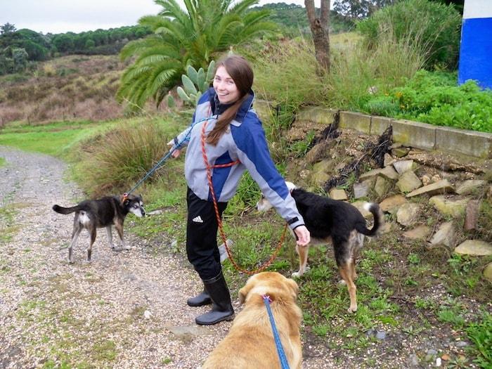 Tratadora de cachorros
