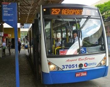 Bus Guarulhos