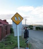 Penguins road sign in New Zealand