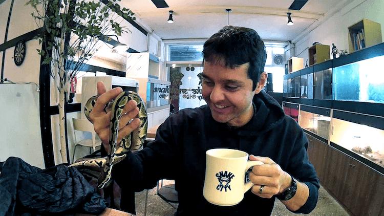 Cafe dos Repteis e cobras em Jeonju