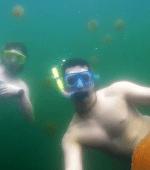 Jellyfish Lake Rock Islands Palau