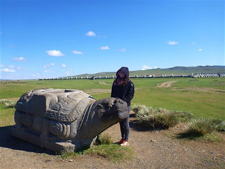 Turtle Karakorum