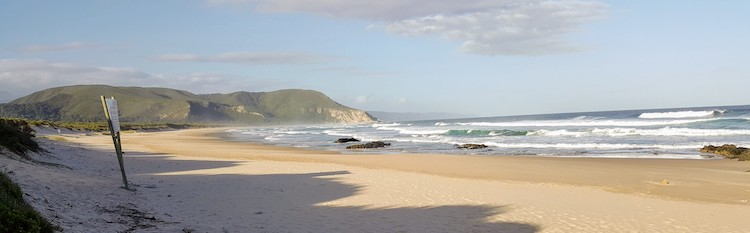 South Africa 9