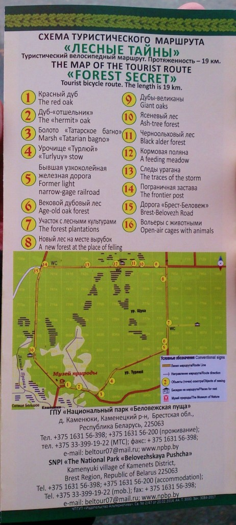 Belovezhskaya Pushcha National Park bike path 2