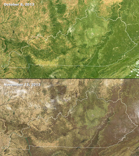 MODIS images of changing seasons in Kentucky, 2013