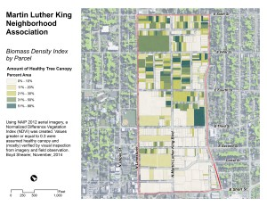 NeighborhoodGreenIndex_MLKNA