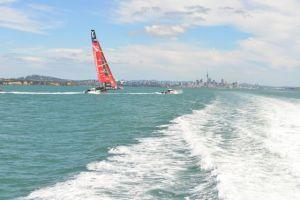 Auckland Skyline in Distance