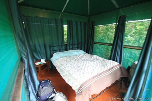 Our room in the jungle