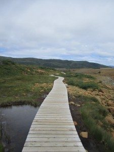 Part Of The Boardwalk On The Tablelands Trail