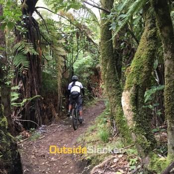 Mountain Biking Rotorua