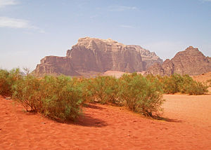A Hot Air Balloon Flight at Wadi Rum