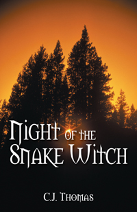 Night of the Snake Witch book cover