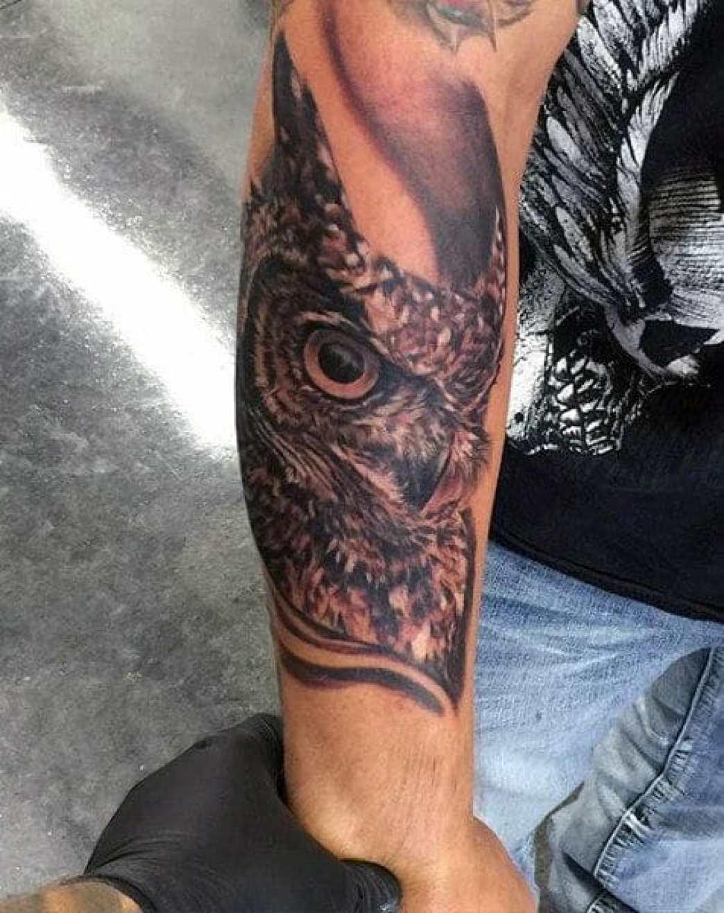 Male Owl Sleeve