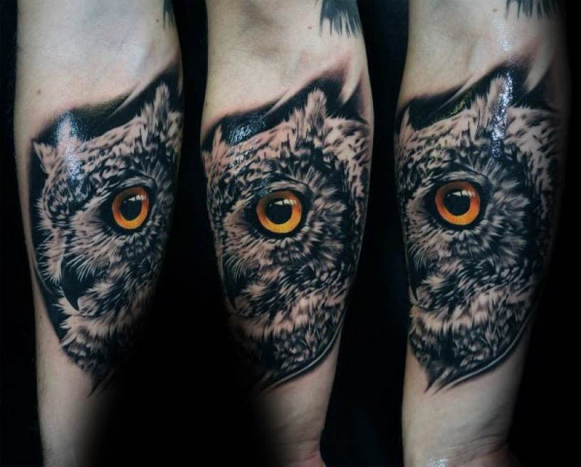 Inner Arm Owl Tattoo