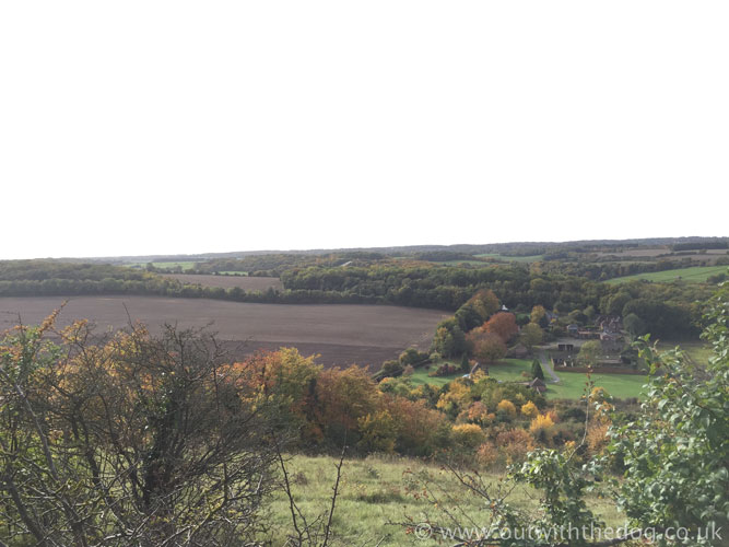 Darland Banks - View