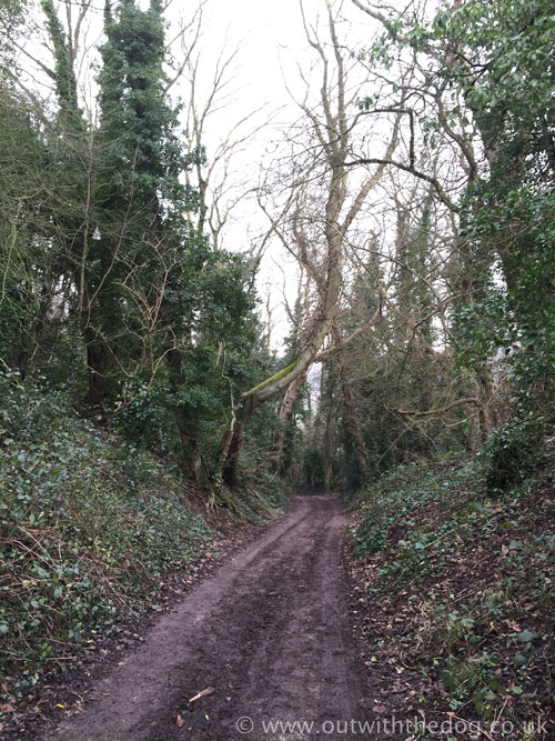 Blue Bell Hill Byway
