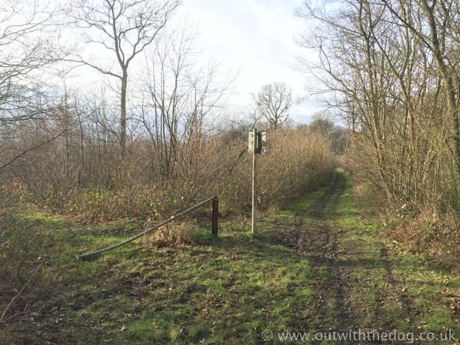 Cliffe Woods track