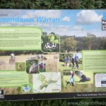 Queendown Warren information board