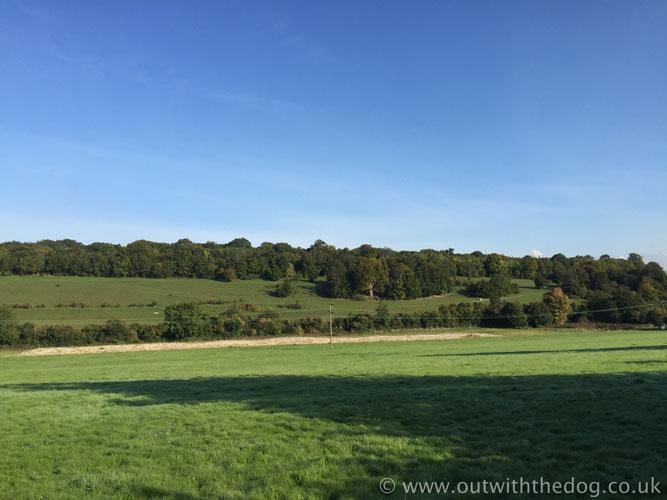 Queendown Warren view