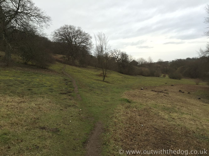 Queendown Warren - Footpaths