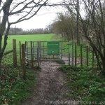 Queendown Warren -Field