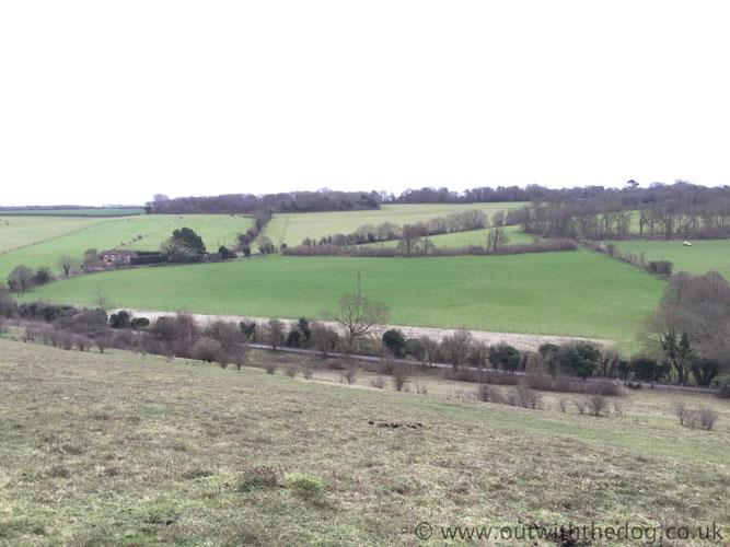 Queendown Warren - View of field