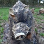 Hucking Carved Pig