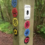 Greatpark wood - Signpost crossroads at the North Downs Way junction.