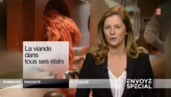Capture d'écran de l'émission.