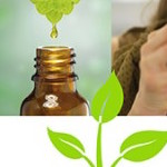 Phytothérapie : un vadémécum pour se soigner en toute sécurité