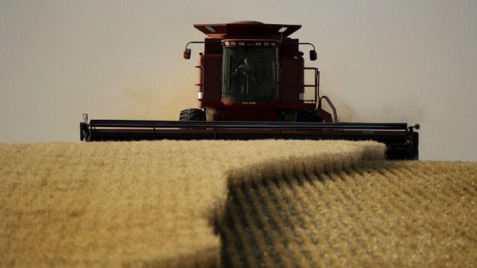 Küresel gıda fiyatları bir yılda yüzde 40 arttı